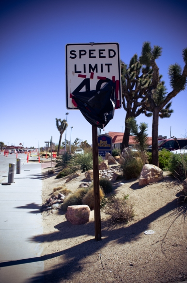 #yuccavalley (18 of 25)