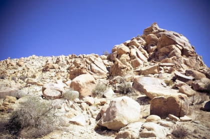 #yuccavalley (24 of 25)