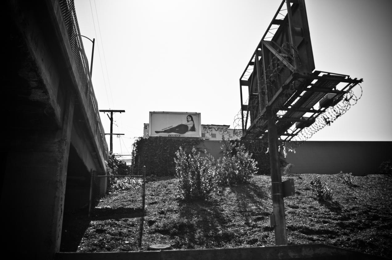 L.A. Glimpse