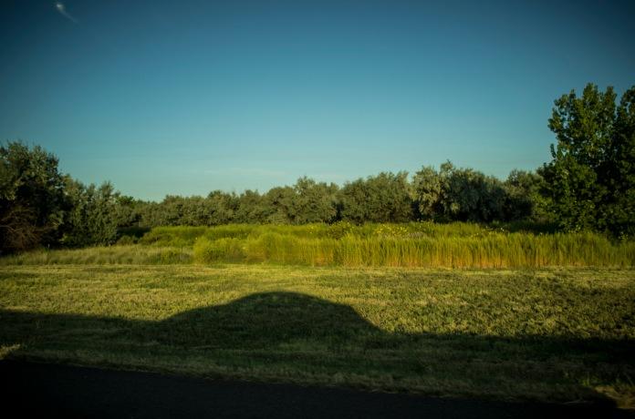 j_nix_roadtrip_shadow_landscape_7